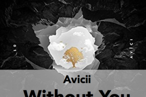 avicii without you トップ